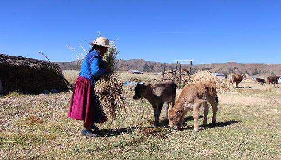 El Gobierno espera llegar a más de 800 mil familias vulnerables en las zonas agrarias.