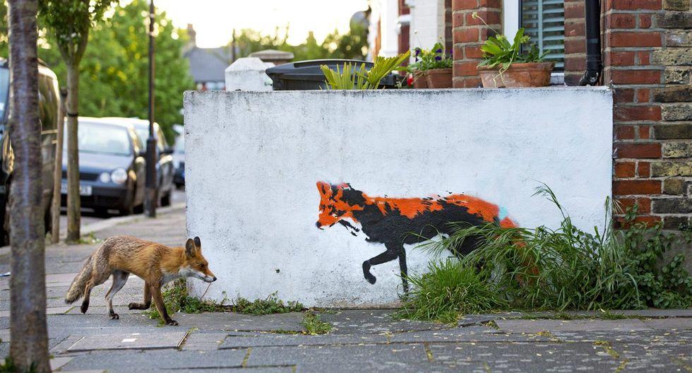 Zorro en Londres.