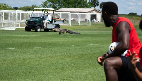 Cocodrilo ingresó a entrenamientos del Toronto FC. (Foto: Toronto)