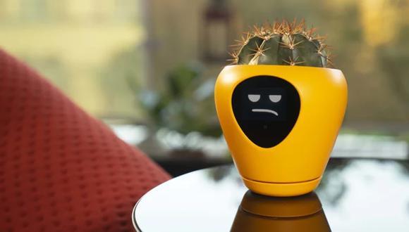 Esta es Lua, la maceta que te informa sobre el estado de ánimo de tu planta. (Foto: Mu Design)