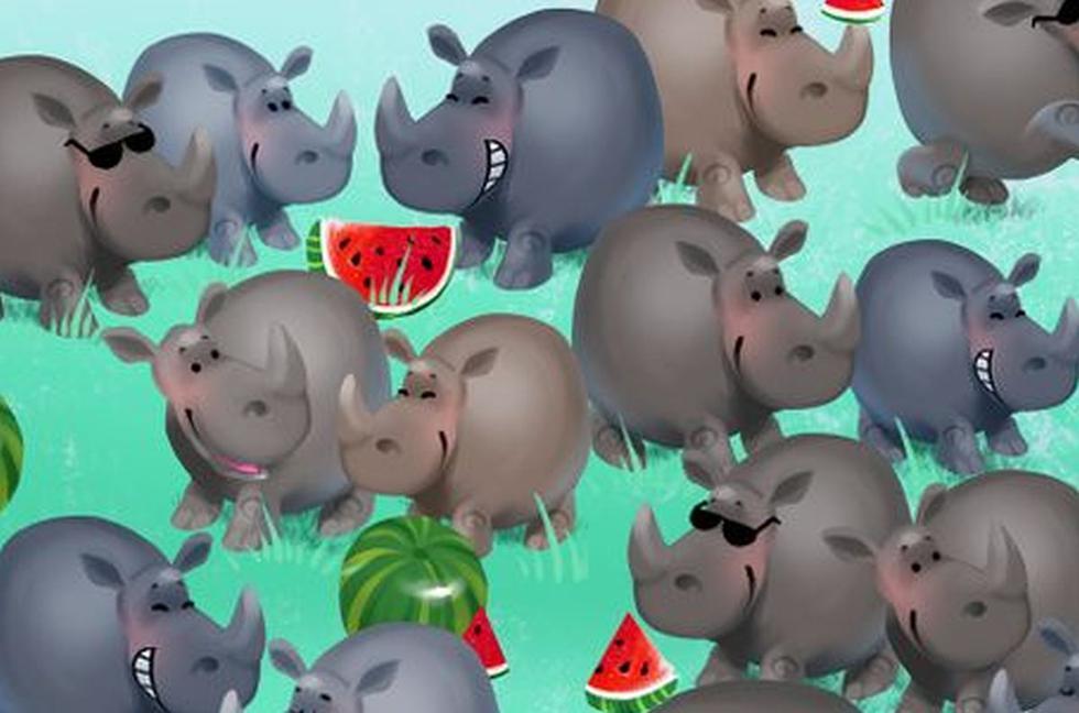 Halla al hipopótamo oculto entre los rinocerontes de la imagen que es tendencia en redes (Foto: Facebook).