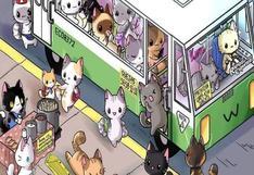 ¿Podrás con este reto viral? Dinos cuál de los gatos es el distraído en solo 5 segundos [FOTOS]