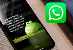 WhatsApp: ¿se puede volver a ver los estados de un contacto que te ha bloqueado?