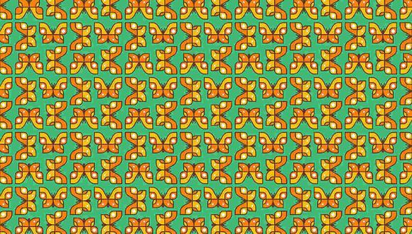 Tienes que hallar las mariposas distintas al resto en la imagen. (Foto: Noticieros Televisa)