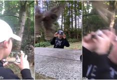 Viral: reacción de niño tras vivir experiencia inusual con un búho en un bosque [VIDEO]