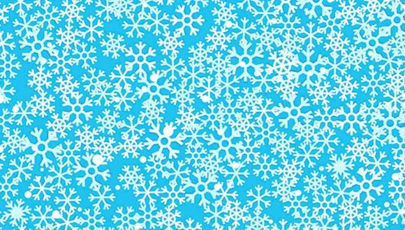 Tu tarea de hoy es ubicar los copos de nieve con el centro de estrella en la imagen. (Foto: Noticieros Televisa)