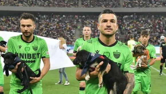 """Dinamo de Bucarest fue uno de los primeros equipos que participó en el proyecto """"Llena el vacío en tu vida"""". (Foto: Save the Dogs)"""