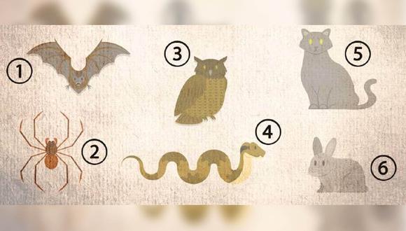 El animal que elijas en este test viral, te revelará aspectos sobre tu personalidad.   Foto: bioguia