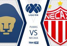 Pumas vs. Necaxa EN VIVO HOY vía TUDN juegan EN DIRECTO en el Olímpico Universitario por Apertura Liga MX