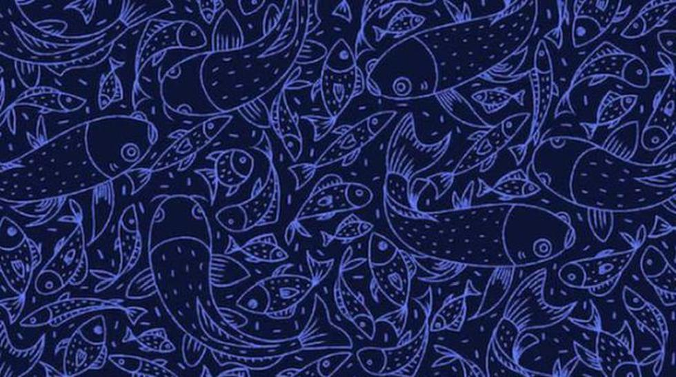 Halla al pez espada y al pez globo en el siguiente desafío visual. (Difusión)