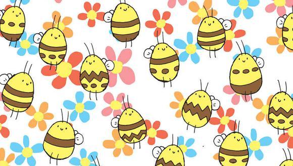 Encuentra la abeja que tiene un patrón único. (Foto: dudolf.com)