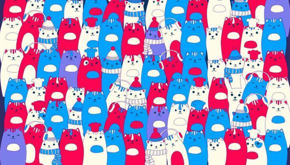 ¿Logras ver donde está el conejo escondido entre estos gatitos? | Foto: genial.guru