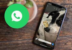 WhatsApp y el truco para recuperar un estado borrado luego de 24 horas