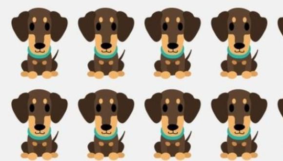 El acertijo que se ha vuelto viral en las redes sociales: encontrar el cachorro diferente a los demás en la imagen. (Foto: MDZ Online)