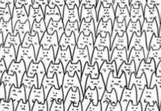 Encuentra a Batman oculto en el reto viral de los gatitos que puso en aprietos a sus enemigos [FOTO]