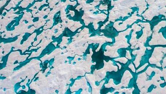 ¿Logras ver al oso polar en esta espectacular fotografía? Atrévete a resolver este complicado reto viral. | Foto: Florian Ledoux