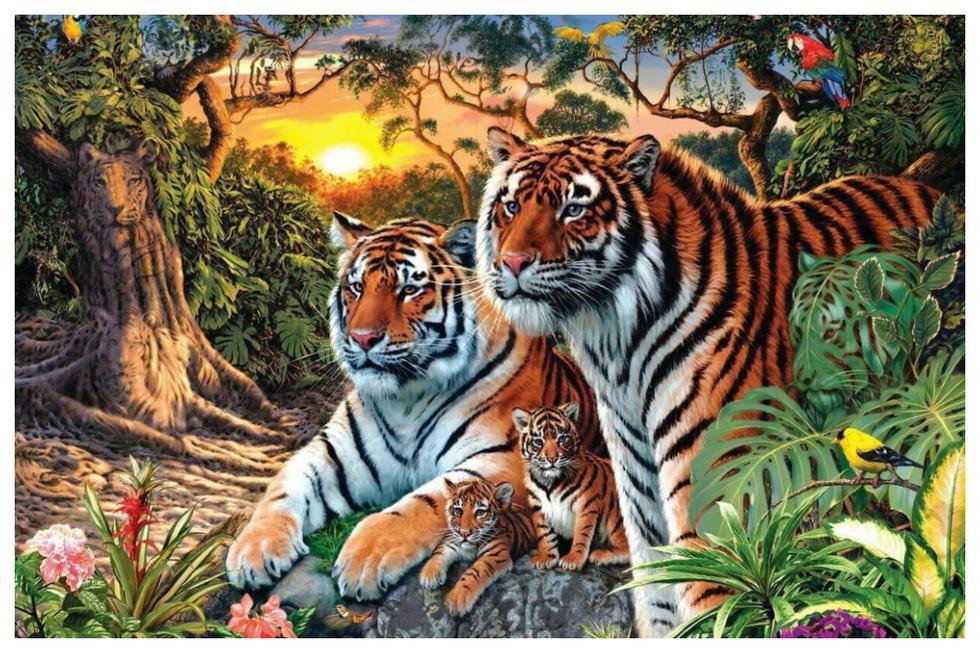 ¿Cuántos tigres ves en esta foto? Cuidado, no te dejes guiar por la primera impresión. (Foto: Twitter de @isharmaneer)