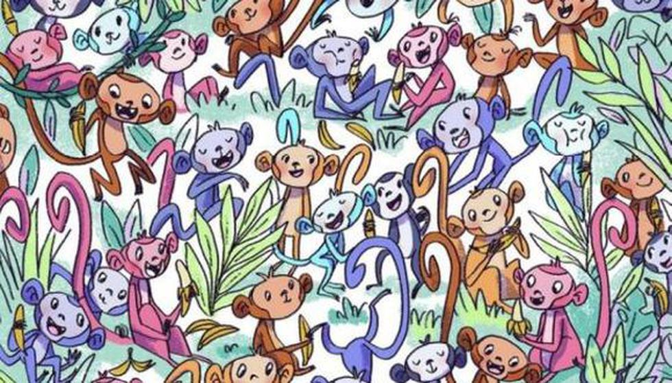Busca el calcetín entre los monos de este acertijo visual, pero hazlo en 10 segundos. (Imagen: mdzol.com)
