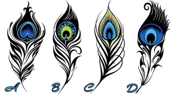 Acertijo de la pluma de pavo real que te indica el camino a la felicidad con escoger una de las cuatro. (CienRadios)