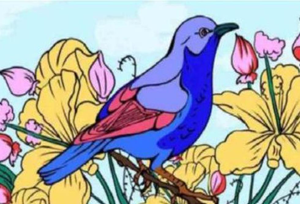 Encuentra en el desafío visual del pájaro la imagen de un pie, un arpa y un corazón. (Facebook)