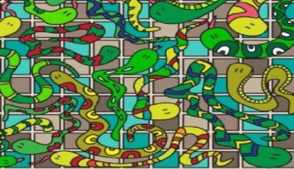 Trata de dar con el accesorio entre las serpientes del reto viral. (Facebook)
