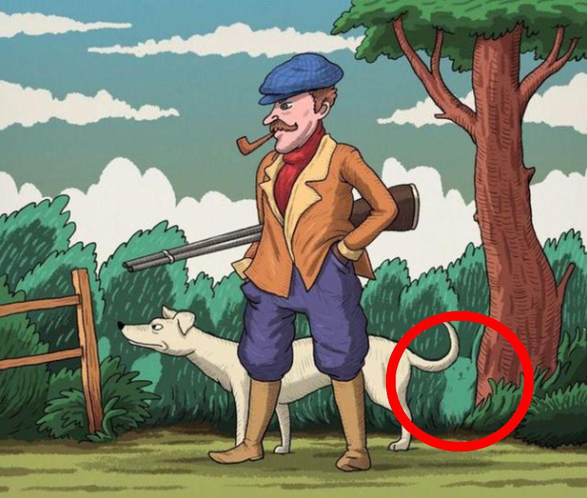 Solución: mira dónde se encontraba la liebre oculta en la imagen (Foto: Facebook/Captura)