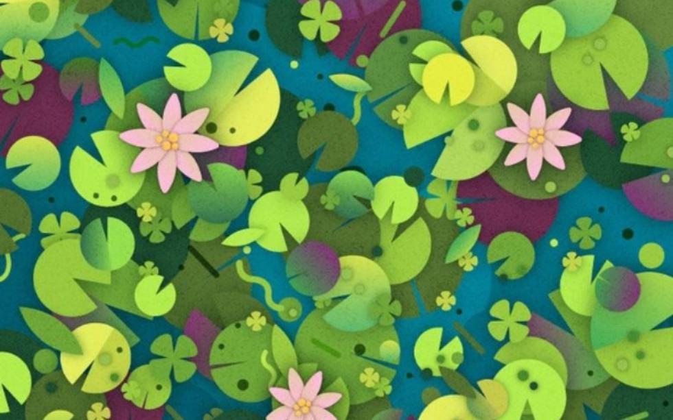 Sé capaz y hábil de ubicar la tortuga de este reto viral camuflada entre las hojas. (Radio Mitre)