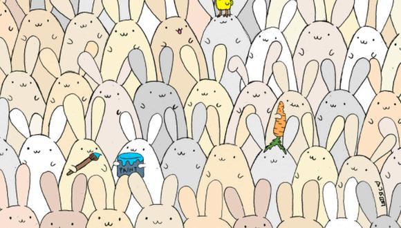 Debes encontrar el huevo oculto en la foto. (Foto: @thedudolf / Facebook)