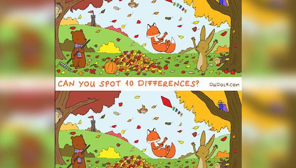 Un nuevo reto viral, creado por Gergely Dudas, es sensación entre los internautas. ¿Podrás hallar las 10 diferencias?| Foto: The Dudolf