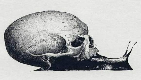 Conoce si eres una persona buena y noble con responder si viste primero un caracol o un cráneo. (Foto: Mdzol/Facebook)