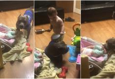 'Pitbull babysitter': reacción de can con dos bebés es viral en las redes sociales [VIDEO]