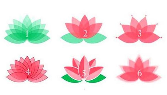 ¿Responde qué flor te gusta más? Tu respuesta en este test psicológico te sorprenderá.  | Foto: namastest