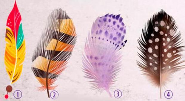 Escoge una de las plumas de la imagen y sabrás cuál es tu talento oculto que dejabas pasar. (Foto: Mdzol/Facebook)