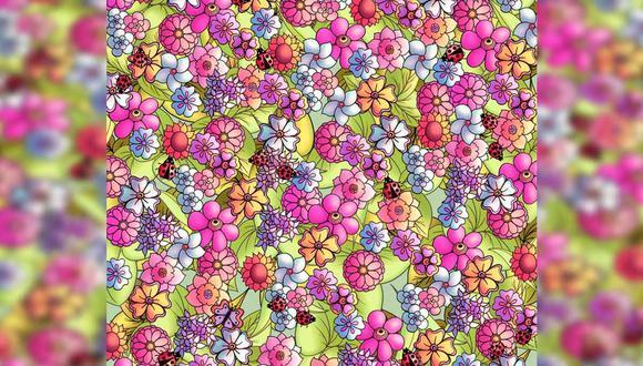¿Logras ver a la mariposa oculta entre las flores? Este reto viral ha sido imposible de resolver.   Foto: genial.guru