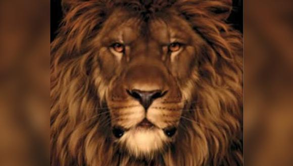 Encontrar al ratón oculto en la foto de un león, el nuevo reto viral que causa furor en Internet por su grado de dificultad. (Foto: Pinterest)
