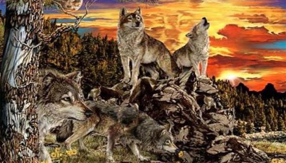 ¿Cuántos lobos ves en la imagen? El número que logres hallar te revelará algo oculto sobre tu personalidad.  Foto: Namastest