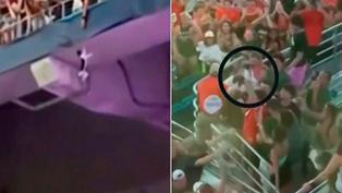 Viral: Hinchas salvan la vida de un gato que quedó colgado en la tribuna del Hard Rock Stadium