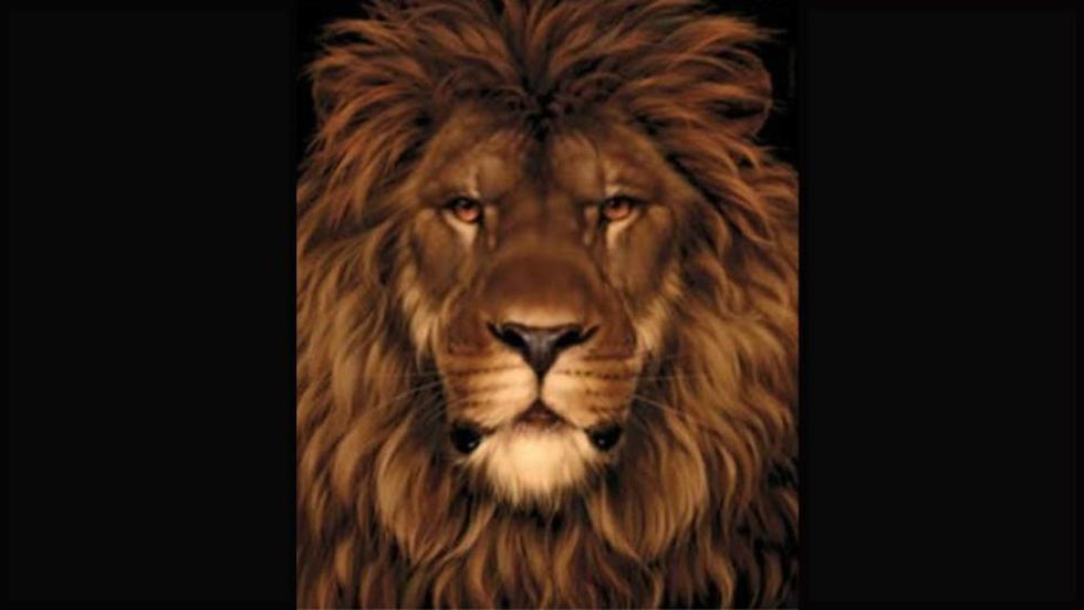 Solo un ojo entrenado encuentra el ratón oculto en la imagen del imponente león. (Difusión)