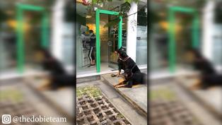 Mujer asiste a cajero con tres perros doberman para alejar posibles ladrones