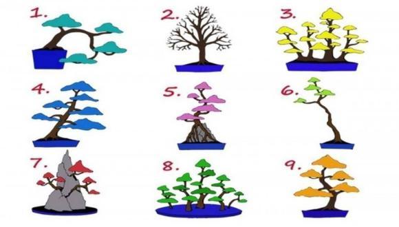 El test viral del árbol que determina el trabajo ideal para ti. (Difusión)