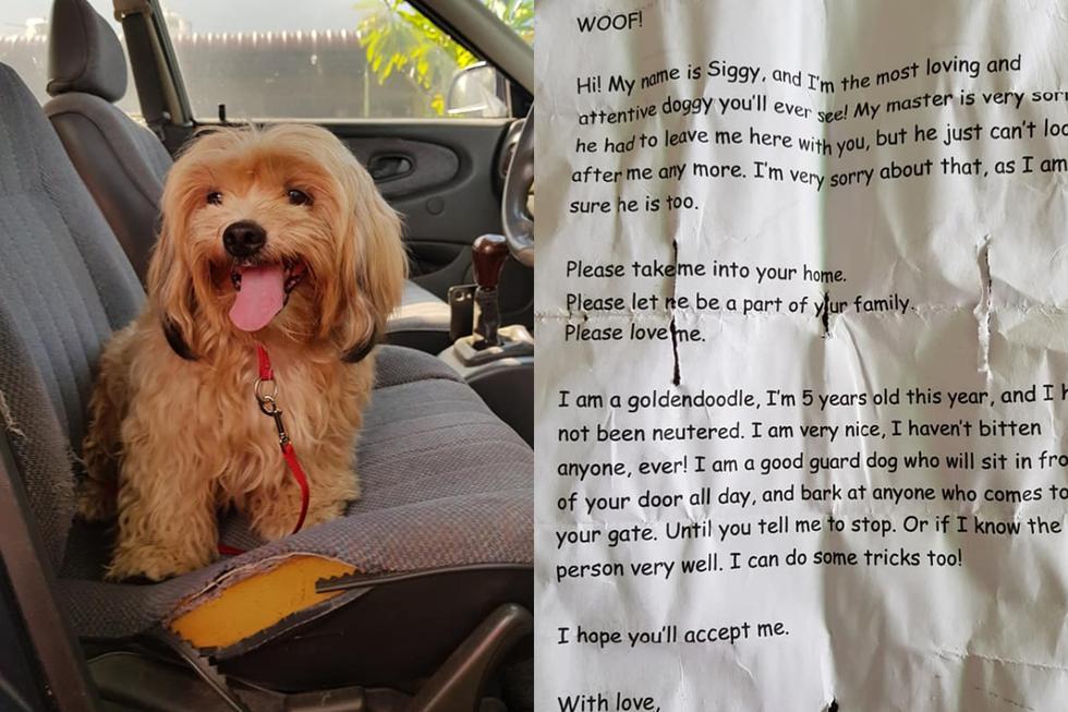 Lionel Vytialingam es un hombre de Ipoh, Malasia, que se dirigía a hacer compras en su auto cuando se topó con una cachorra que intentaba eludir el tráfico. (Foto: Facebook/Lionel Keith Vytialingam)