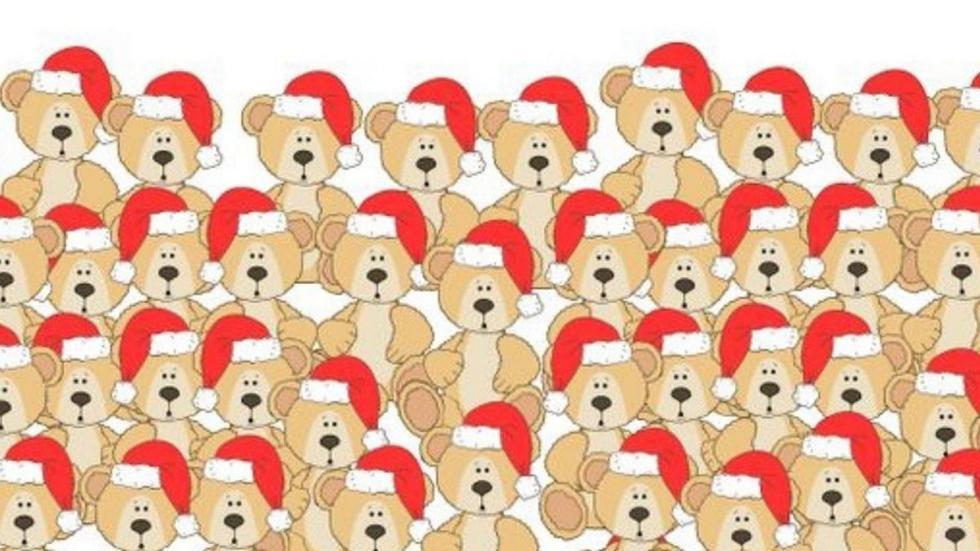 ¿Puedes ver al osito sin gorro navideño en la imagen viral? (Difusión)