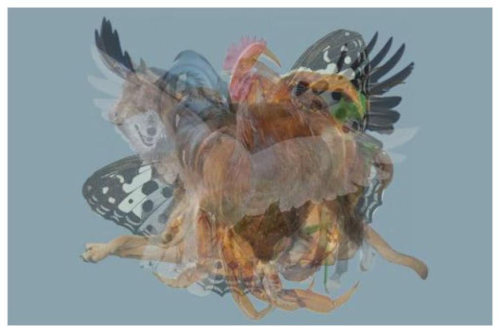 El primer animal que percibas en esta imagen define tu personalidad. (Foto: web Los40)