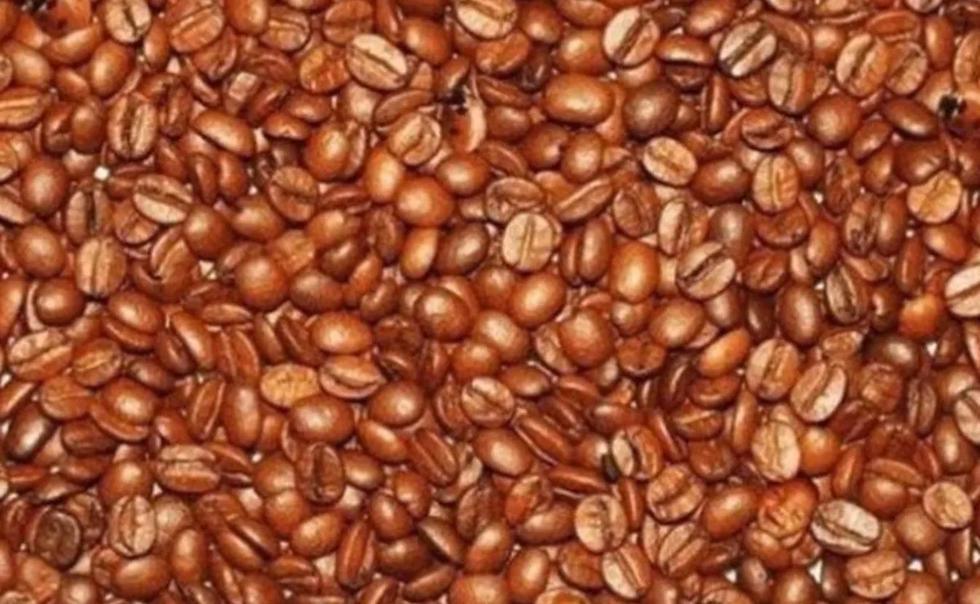 Encuentra aquellas caras de bebé ocultas en esos granos de café. (Difusión)