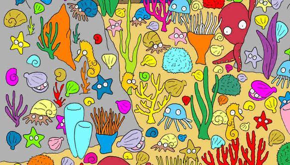Tu misión, si decides aceptarla, es hallar al pez en la imagen. (Foto: dudolf.com)
