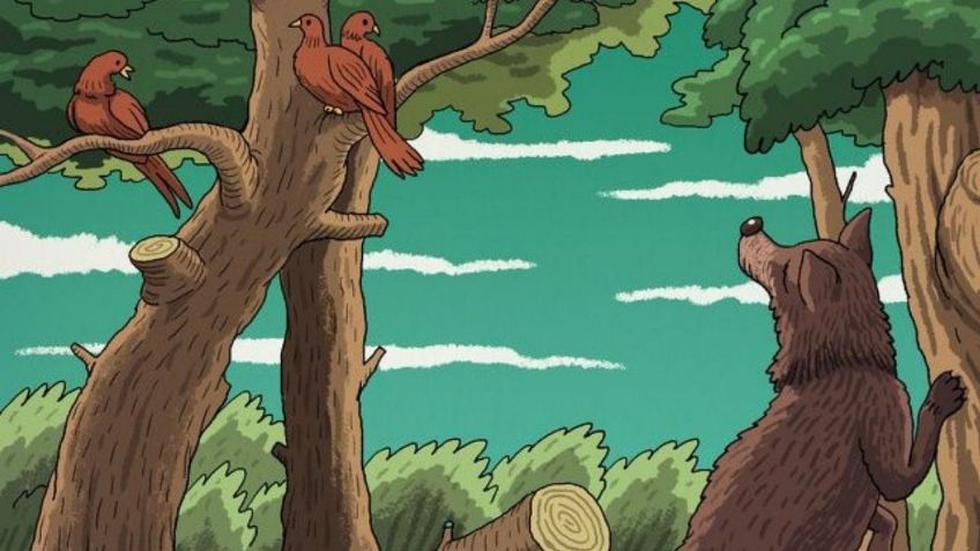 Ubica a los dos animales ocultos en la gráfica viral del bosque. (Mdzol)