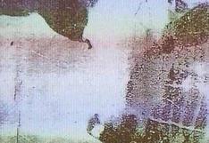 Reto viral: ¿puedes encontrar al animal oculto en la foto?