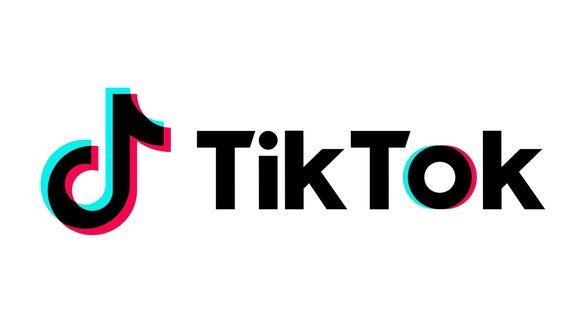¿Quieres crear un TikTok con tus fotos antiguas? ¿Compartir con todos cómo ha crecido tu perrito? Entonces este es el truco que debes realizar. (Foto: TikTok)