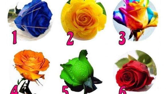 La rosa que más te guste te dará información importante sobre tu personalidad. (Foto: iProfesional)