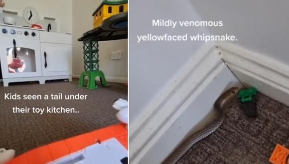 Una madre llamó la atención en Internet con su reacción al encontrar una serpiente venenosa en el cuarto de juguetes de sus hijos. (Foto: @moistzebra_ / TikTok)
